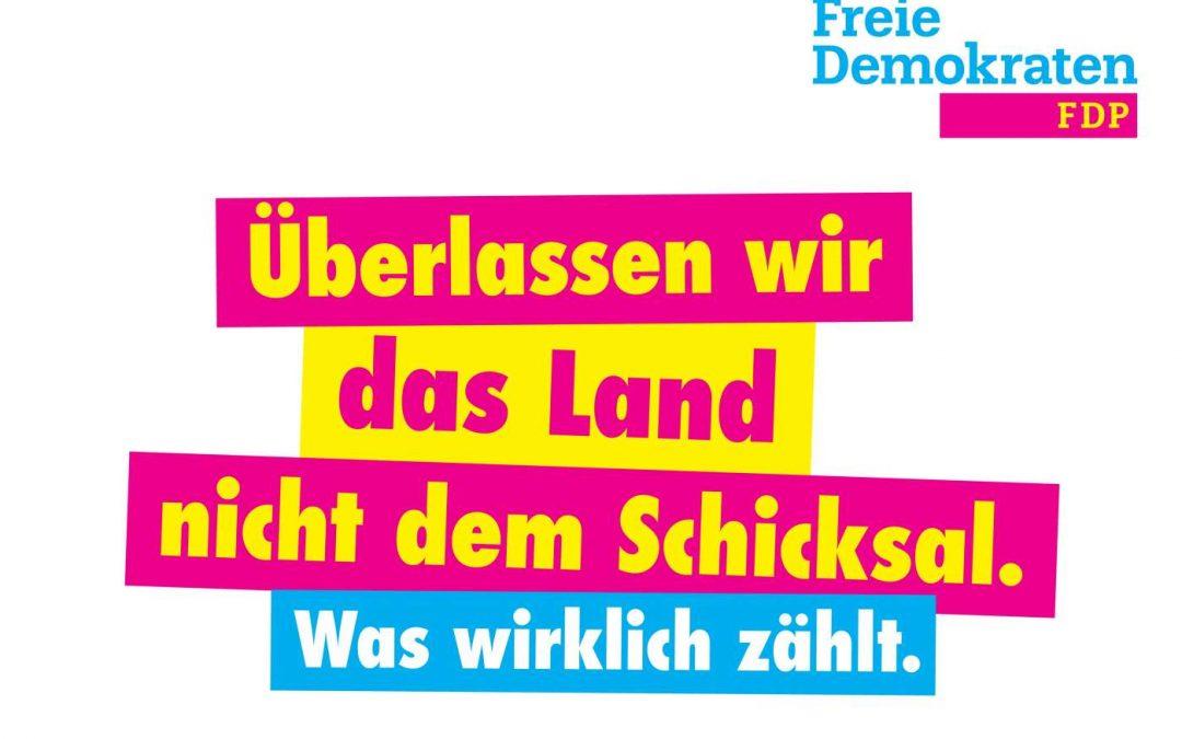 Jung, FDP: Wasserstoffzügen gehört die Zukunft